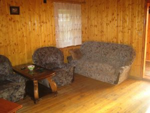Сдам в аренду коттедж на  берегу Москва реки, в лесу для 20 человек.
