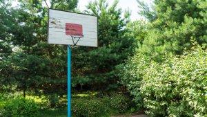 Сдается  коттедж на 20 человек с шикарным бассейном и баскетбольной площадкой