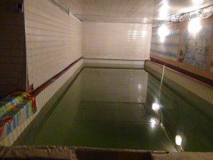 Сдается дом с баней и бассейном для 20 человек