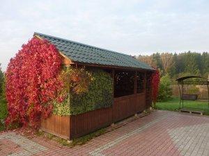 Сдается дом на опушке леса на сутки