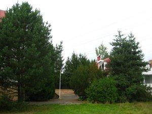 Сдается коттедж в деревне Писково