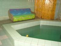 Частный дом  с бассейном на сутки в  4 км МКАД
