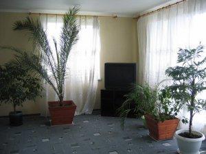 Сдам в аренду коттедж на сутки  для 25 чел. Сауна, зимний сад, джакузи